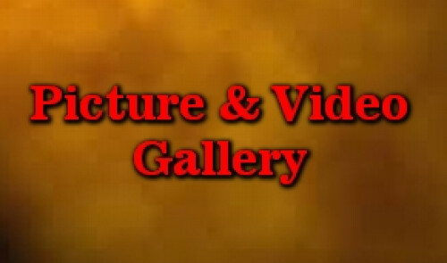 Picture & Video Gallery